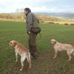 Jack Peckitt working with two labradors